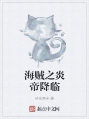 海贼之炎帝降临小说